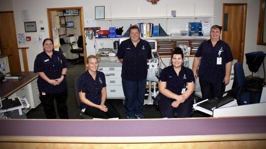 TDHS Ward Nurses